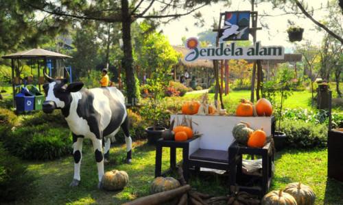 Tempat Wisata Anak Di Bandung Jendela Alam