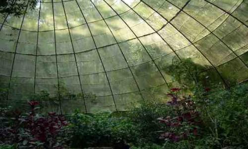 Tempat Wisata Anak Di Bandung Taman Kupu-Kupu