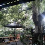 tempat wisata kuliner di bandung yoghart cisangkuy