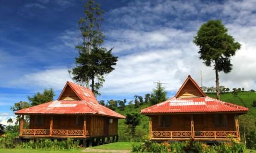 penginapan murah di ciwidey rumah kayu kelapa