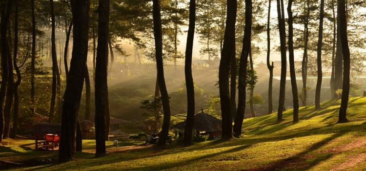 Wisata Alam di Bandung