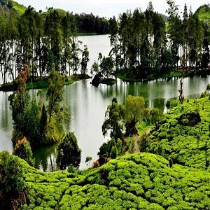 Wisata Alam Bandung Situ Patenggang