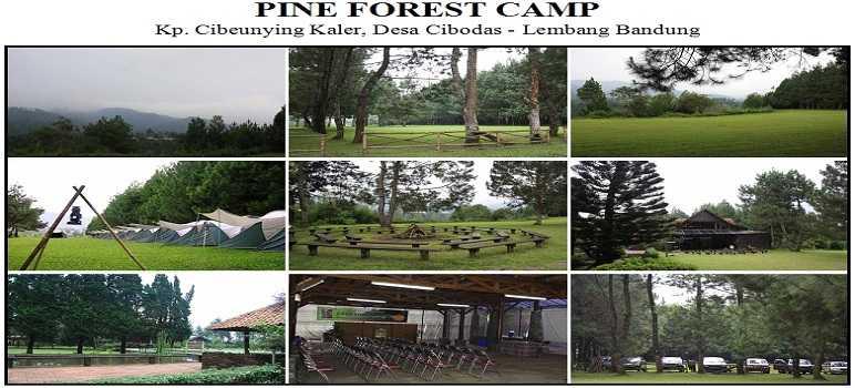 Pine Forest Camp Lembang