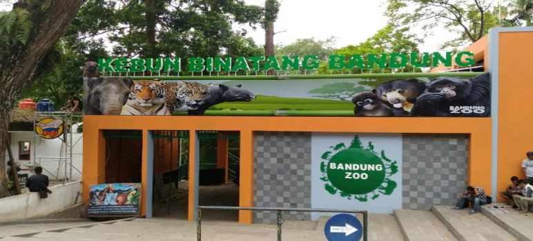 Tiket Masuk Kebun Binatang Bandung Zoo