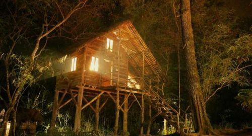 Rumah Pohon Taman Buru Gunung Masigit Kareumbi