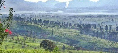 Gunung Nini Malabar Pangalengan Bandung