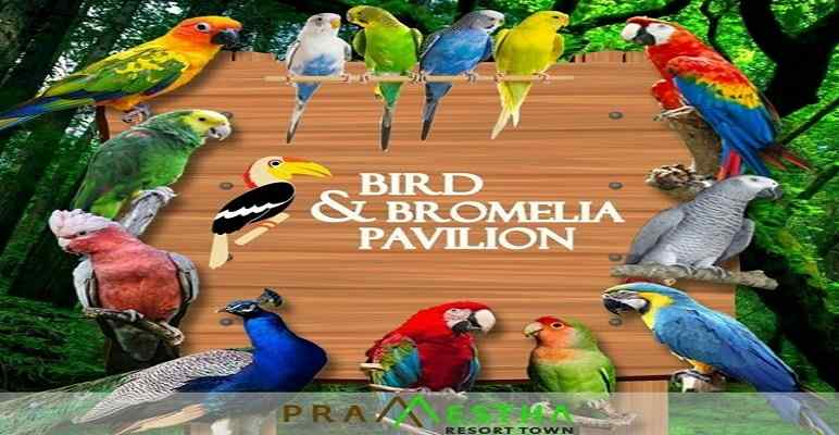 Bird & Bromelia Pavilon Pramestha Bandung