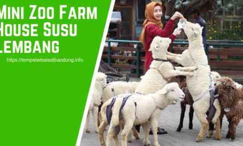 Mini Zoo Farmhouse Lembang Bandung