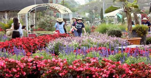 Tempat Wisata Keluarga di Bandung yang Murah dan Terkenal