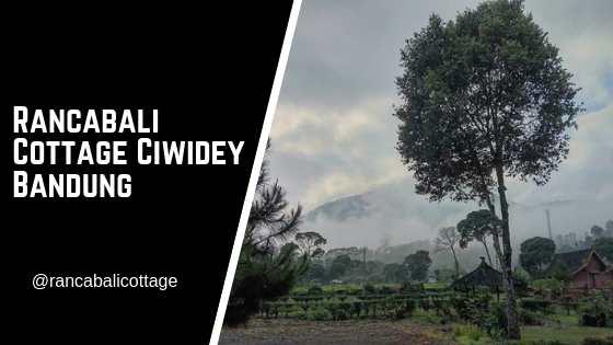 Rancabali Cottage Ciwidey Bandung