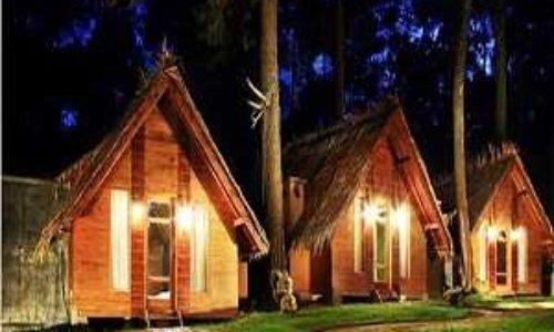 Terminal Wisata Grafika Cikole Lembang Bandung Camping Ground