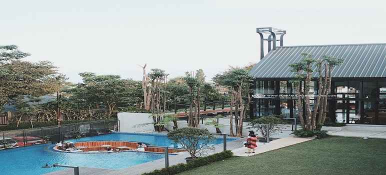 Kalpa Tree Bandung