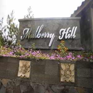 Mulberry Hill Lembang Bandung
