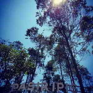 Wana Wisata Pasir Ipis di Desa Jayagiri Lembang Bandung