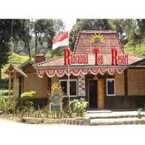 Rancabali Tea Resort Ciwidey Bandung Selatan