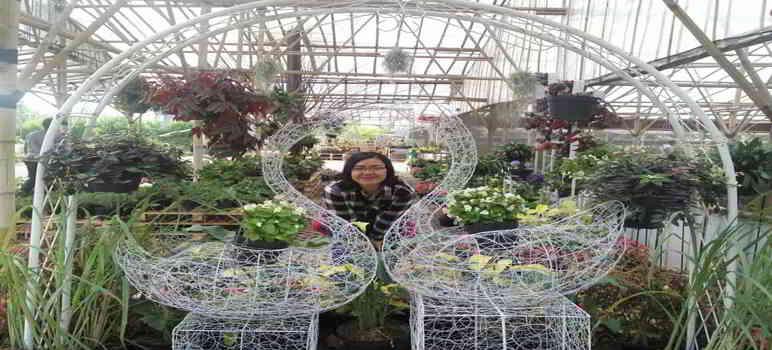 Taman Bunga Grace Rose Farm Garden Lembang Bandung