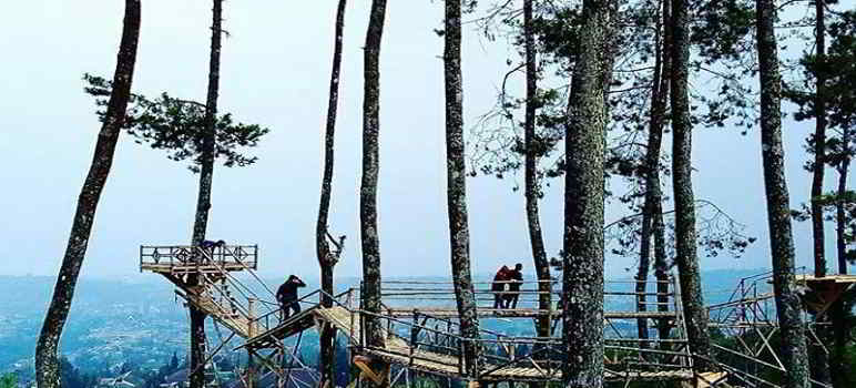 Wana Wisata Nyawang Bandung Lembang