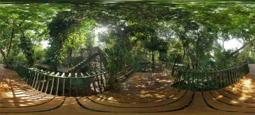 Forest Walk Babakan Siliwangi Baksil Bandung