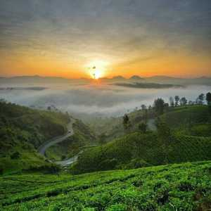 Bukit Cukul Sunrise Point Pangalengan Bandung