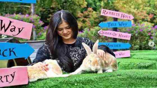 Rabbit Wonderland Dusun Bambu Lembang