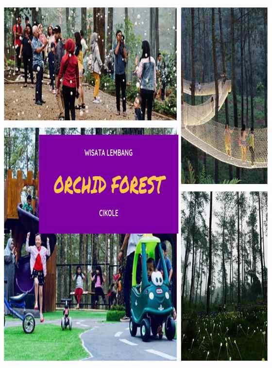 Hotel Dekat Orchid Forest Lembang