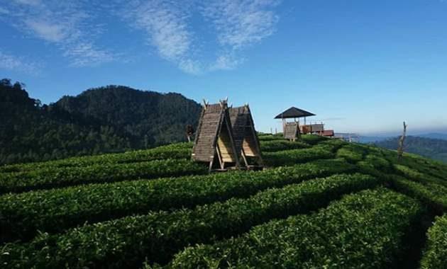 Fasilitas Saung di Wayang Windu Panenjoan 1800 Mdpl Pangalengan Kabupaten Bandung Jawa Barat