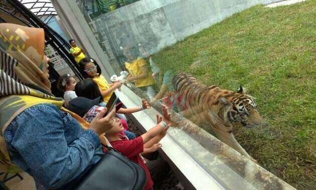 harga_tiket_lembang_park_and_zoo