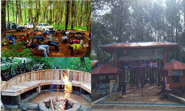 Harga tiket_masuk dan_sewa_tenda-camping_patuha_pinus_land_ciwidey_bandung