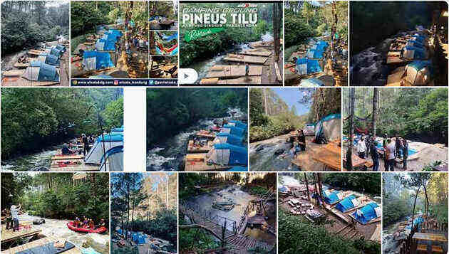 pineus_tilu_camping_ground_pangalengan